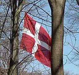 Flaggan i skogen i Skagen i april 2007.